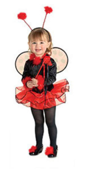 Primary image for Toddler Lil' Ladybug Halloween Costume
