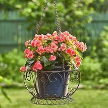 Zaer Ltd. Hanging Metal Basket Planter (Aged Bronze) - $44.95