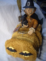 Bethany Lowe Halloween Witch Riding a Sponge Car & Black Cat no. T4032 image 3