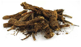 Golden Seal Root cut 1oz (Hydrastis canadensis) - $25.00+