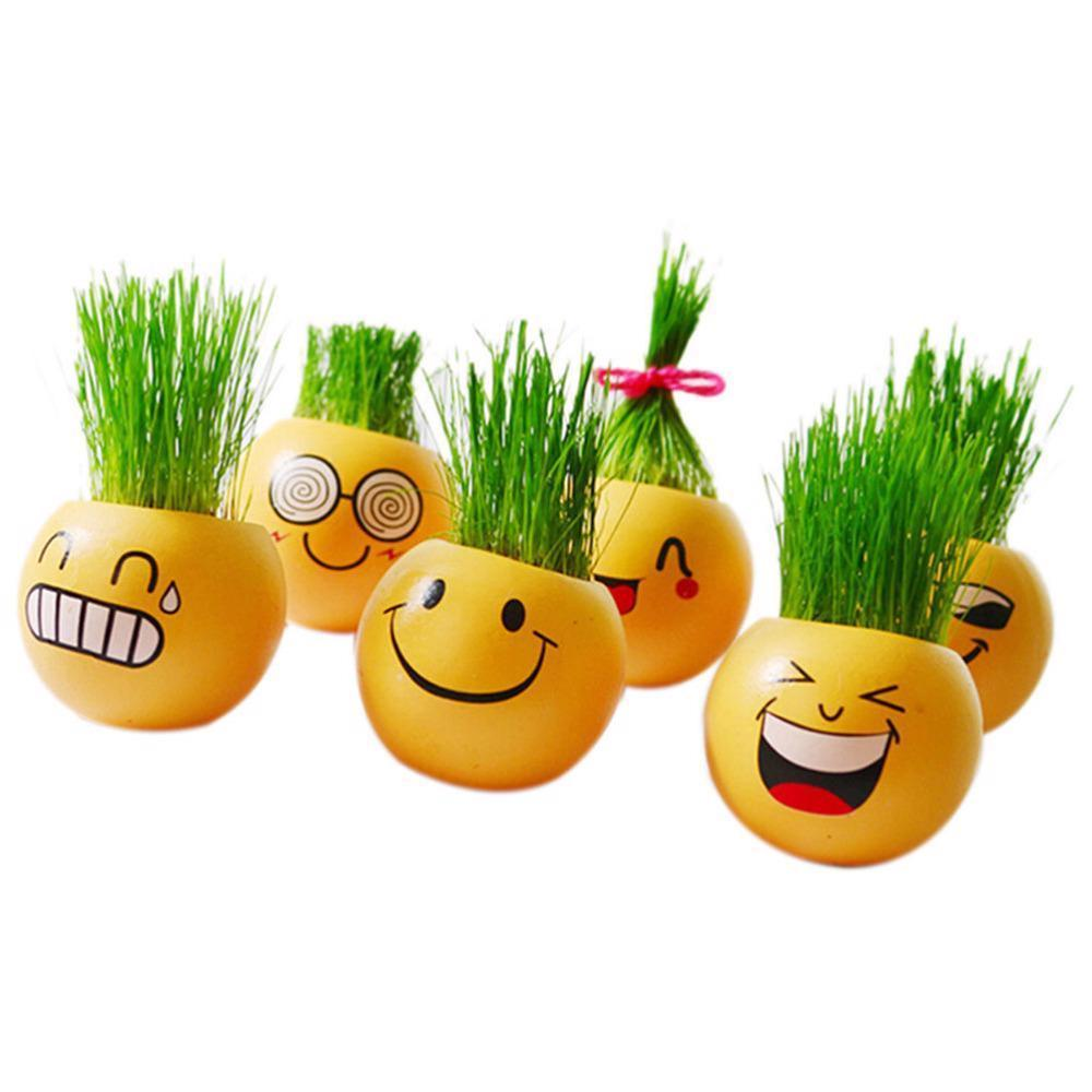 Flower Pot Cartoon Emoji Smile Face Toy Mini Flowerpot Succulents Fleshy Plants