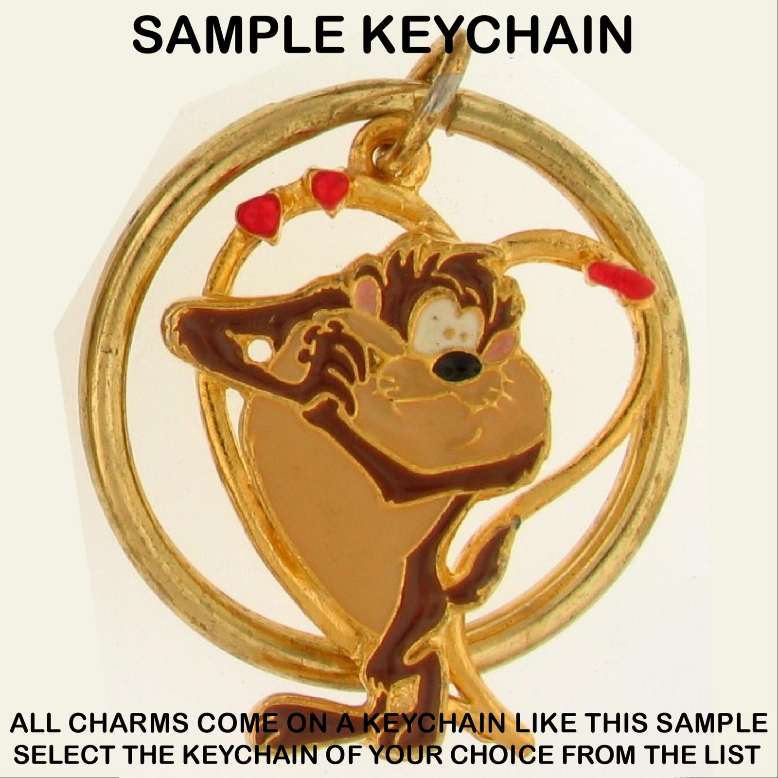 Keychain Taz TASMANIAN Devil LOONEY TUNES Warner Brothers Character Choice 0017w