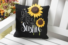"Bucilla Felt Pillow Applique Kit 10""X10""-You Are My Sunshine - $34.31"
