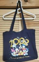 "2002 Walt Disney ""Celebrate The Magic Florida"" Drawstring Tote Bag 18x16 - $15.87"