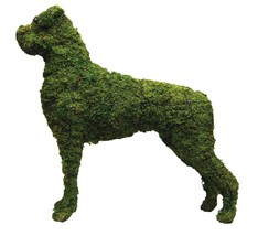 """Boxer 31"""" Moss Topiary Sculpture - $259.99"""