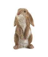 Curious Rabbit Garden Statue - $13.49