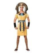 Pharaoh Costume, Mens, Egyptian, Fancy Dress - $638,17 MXN