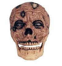 Crazy Bonez Zombie Skull - $13.12