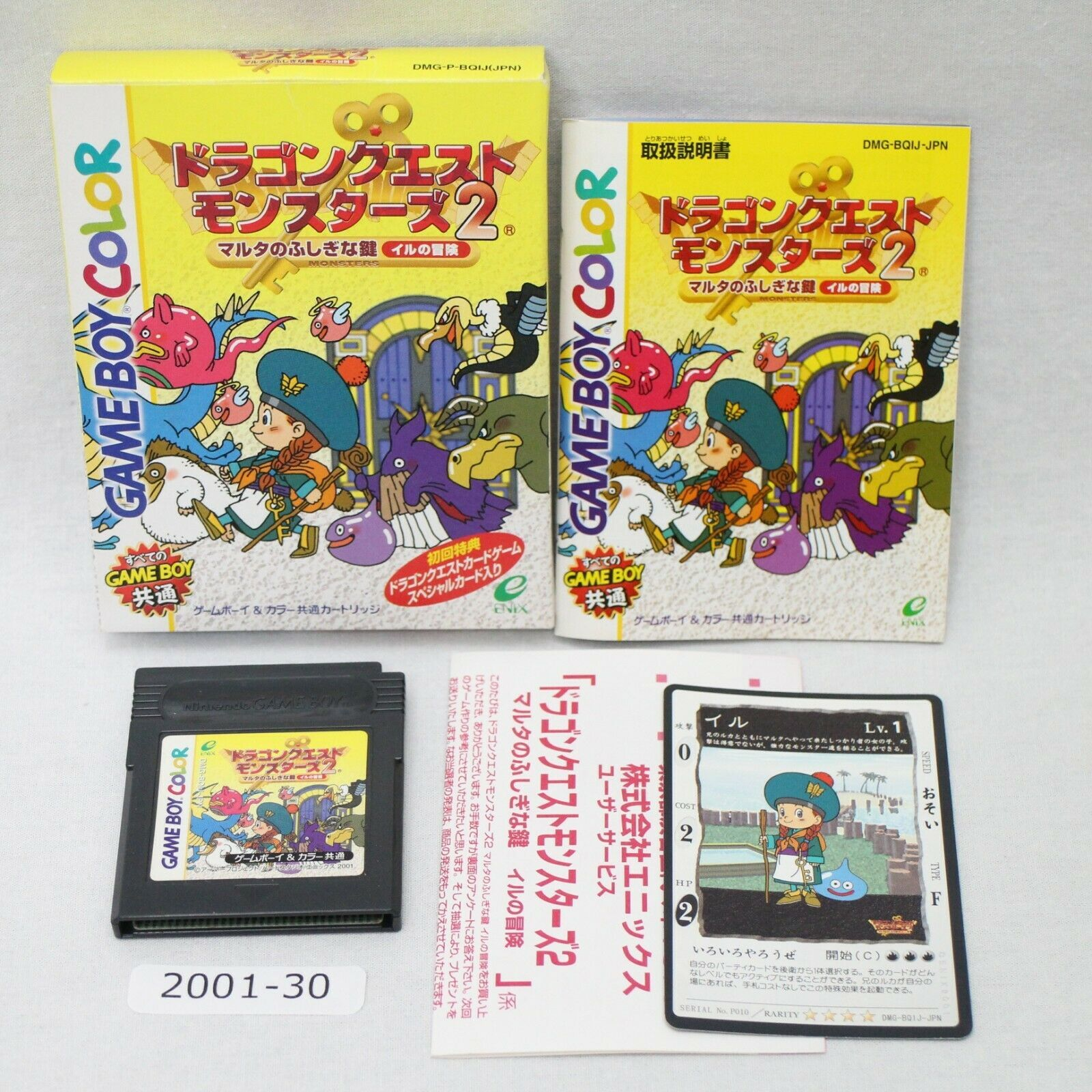 Primary image for Nintendo Gameboy Couleur Dragon Quest Monsters 2 Iru Boîte Actif Japon 2001-030