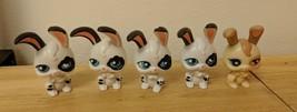 Hasbro Littlest Pet Push n Play Bunny Rabbit Lot of 5 - some may be cust... - $5.00