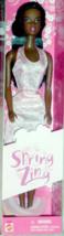 Barbie Doll  (AA) - Spring Zing Barbie Fashion Doll (AA) - $24.75