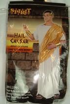 Spirit Adult Costume HAIL CAESAR One Sz Fits Most Toga Robe Headband Cosplay - $16.80