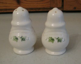 Pfaltzgraff Pottery Salt Pepper Shaker Set Vines Ivy Leaves Unique Pattern - $12.86