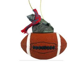 Iguana Football Ornament - $17.99