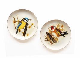 1970s Vintage Enesco Porcelain Wall Plaques Colorful Tit Mouse Birds Transferwea - $28.00