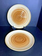 "Set of 2 Gibson Everyday OCEAN DREAM Brown Swirls 10 3/4"" Dinner Plates  - $16.82"