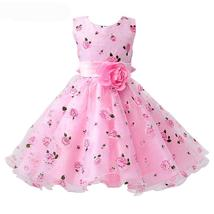 Princess Girls Pink Dress with Flower Children Kids Wedding Party Birthd... - $49.99