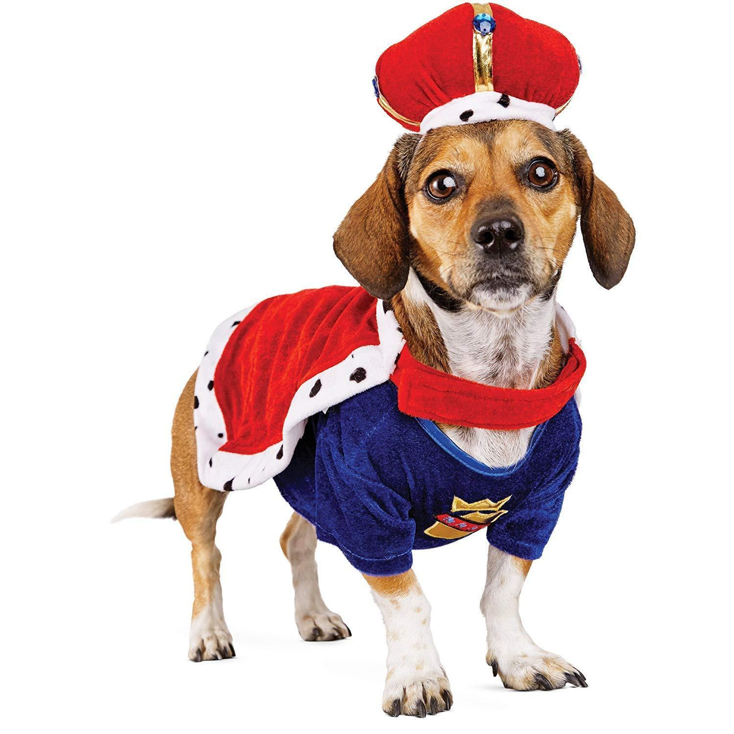 Bootique XL Majestic King Dog Pet Costume Halloween X-Large New 19-22""