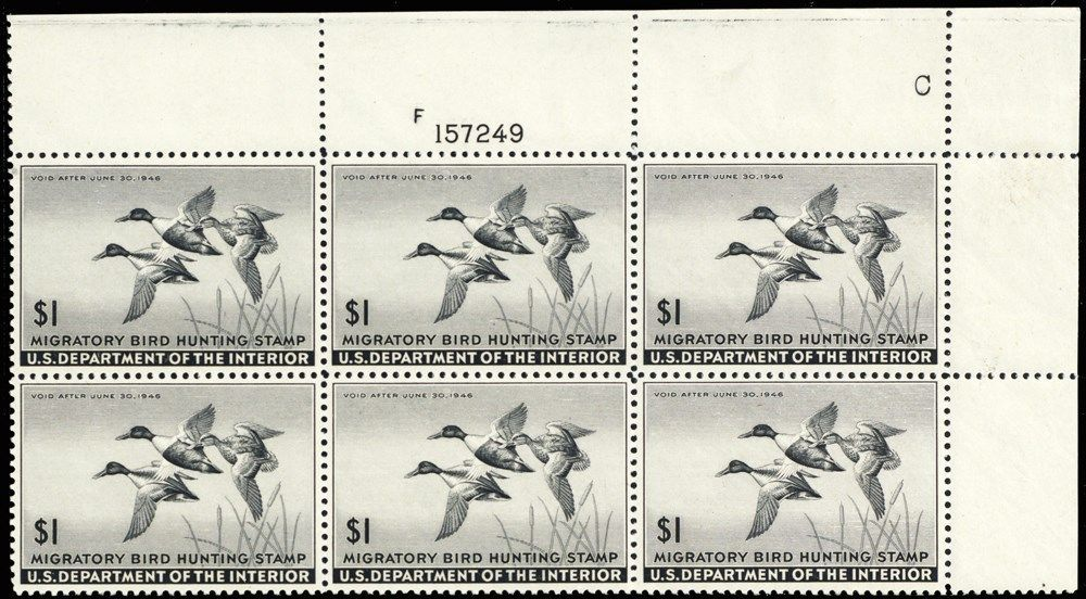 RW12, XF NH $1 Duck Plate Block of Six Stamps Cat $600.00 - Stuart Katz