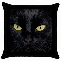 Throw pillow case cover cartoons black cat - $19.50