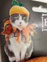 Cat Pet Costume Pumpkin Collar Hat Bootique Halloween Outfit New 2689585 - $9.99