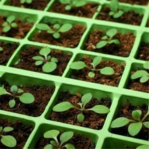Pet Pad Seedling Heating Mat 52X24cm PVC Waterproof Cloning Garden Supplies - $32.57