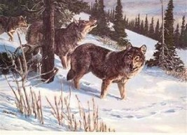 TIMBER WOLF Tom Beecham Remington Wildlife Art Collection Print  - $29.67
