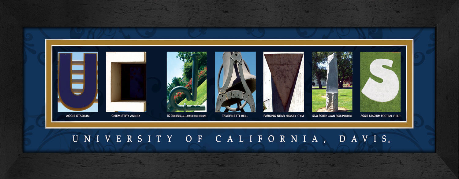 Primary image for University of California - Davis Officially Licensed Framed Campus Letter Art