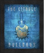 "The Citadel Bulldogs ""Retro College Logo Map"" 13x16 Framed Print  - $39.95"