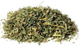 Catnip cut 2oz  (Nepeta cataria) - $12.82