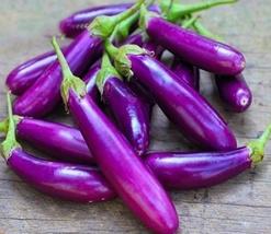100pcs Very Delicious Edible,Eggplant Bright Purple Long Vegetables Seeds IMA1 - $13.97