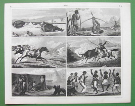 BRAZIL Indians Cattle Hunting Bird Shooting Negro Dance - SUPERB Antique... - $13.49
