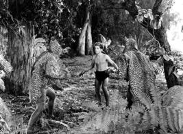 Johnny Sheffield - Tarzan And The Leopard Woman - Movie Still Poster - $9.99+