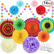 Fiesta Party Decorations Party Supplies Hanging Paper Fans Pom Poms Tiss... - $15.76