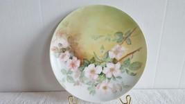 "Haviland Limoges France Hand Painted 8-1/2"" Porcelain Plate 1894-1931 Euc - $14.99"