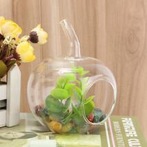 Crystal Glass Flower Vase Terrarium Container Micro Landscape Glass Bott... - $8.48