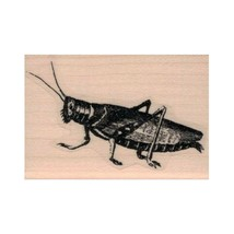 NEW Grasshopper RUBBER STAMP, Nature Stamp, Locust Stamp, Insect Stamp, ... - $8.15