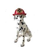 DECORATIVE BLACK AND WHITE SPOTTED DOG CERAMIC FIGURINE ORNAMENT  - $22.75