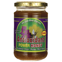 Y.S. Organics - Raw Antioxidant Power Honey - 13 oz - $14.99