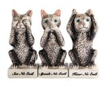 Cat Grey Kitties See Hear Speak No Evil Salt Pepper Shaker Toothpick Set #GFT02