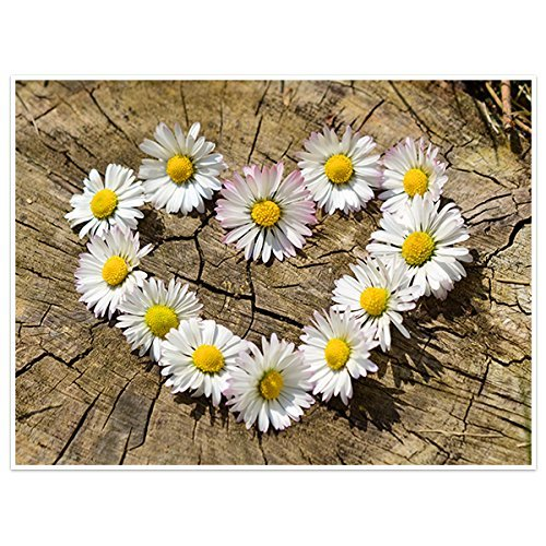 Heart Of Daisies Photography Wall Art Poster