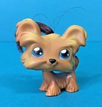 Littlest Pet Shop Yorkie Terrier Shih Tzu Brown Hair Puppy Dog #6 LPS Au... - $5.95