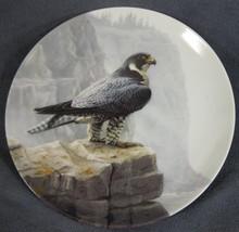 Peregrine Falcon Collector Plate Majestic Birds of North America Daniel ... - $21.95