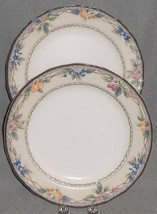 Set (2) Mikasa Country Classics COUNTRY HARVEST PATTERN Dinner Plates - $39.59
