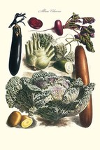 Vegetables; Cucumber, cabbage, eggplant, potato, and beet by Philippe-Vi... - $19.99+
