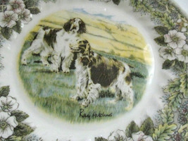 "Churchill ""Hunting Dogs"" Display Plate  Fine Porcelain by Ray Hutchins, ... - $49.99"