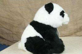 Aurora World Nature Babies Plush Panda Stuffed Animal With Neck Tag image 4