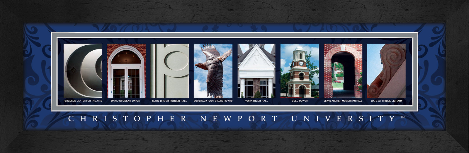 Primary image for Christopher Newport University Officially Licensed Framed Campus Letter Art