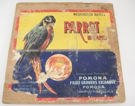 Vintage Parrot Brand Sunkist Wooden Crate End Piece Pomona Fruit Growers As Is - $39.59