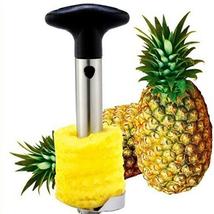 Fashion Kitchen Tool Stainless Steel Fruit Pineapple Corer Slicer Cutter... - $17.20